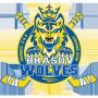Brasov Wolves